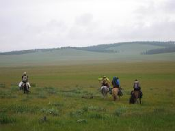 """MONGOLIE-Chevaux"