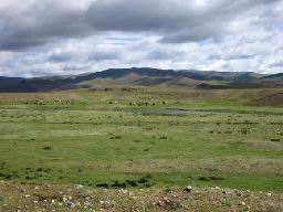 """MONGOLIE-Steppes"""