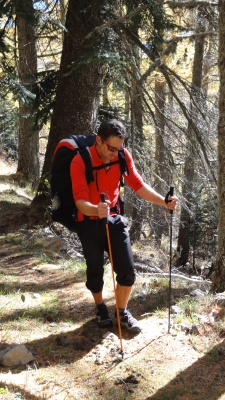 Test comparatif Black Diamond Ultra Distance Trekking pole - Camp Xenon 3 brins, vol rando parapente