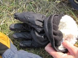 Gants Black Diamond Guide :  le sous gant