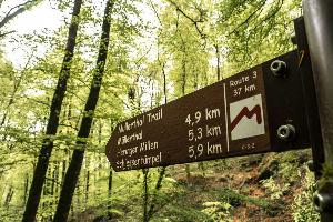 [Luxembourg-Trek] Sur le Mullerthal Trail