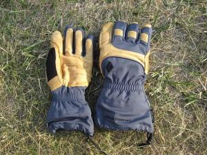 Gants Black Diamond Prodigy gloves
