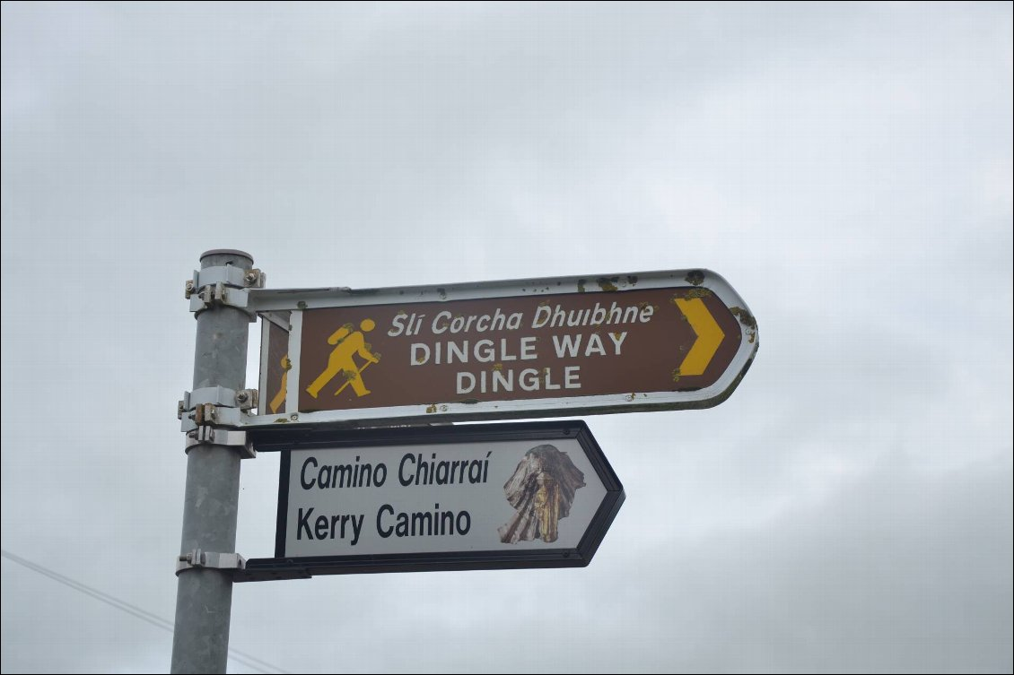 Couverture de Dingle Way