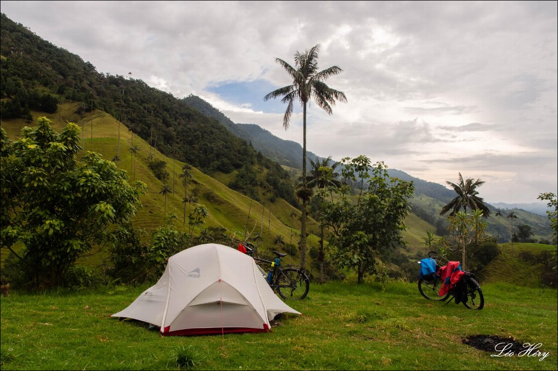 Vallée de Cocora en Colombie. En couple à vélo en Amérique du Sud. Photo Léo Héry